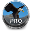 Bird Sounds & Ringtones Pro logo
