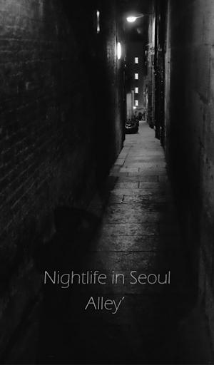 서울밤거리 카카오톡 테마