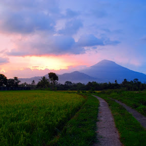 Mt. Sindoro from other side by Christian Nugroho - Landscapes Mountains & Hills
