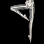 Anatomy for Artists: Ballet icon