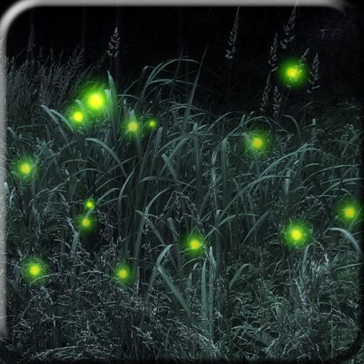 Firefly Live Wallpaper 個人化 App LOGO-APP試玩