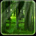 RealDepth Forest LWP logo