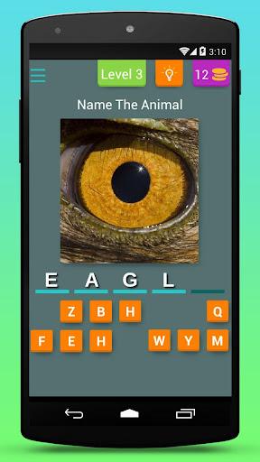 Animal Eye Quiz