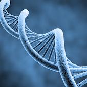 Molecular Genetics