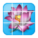 Flower Jigsaw Puzzles icon
