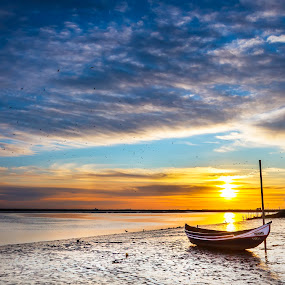 Sunuset by Paulo Veiga - Landscapes Sunsets & Sunrises ( water, wood, murtosa, 2014, waterscape, sundow, boats, twilight, paulo veiga, pixoto, landscape, ria de aveiro, sunset, portugal, salt,  )