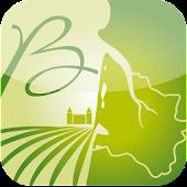 SIG du Vin de Bordeaux