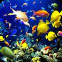 Underwater World icon