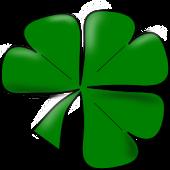I AM IRISH!