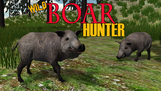 Boar Hunter 2014