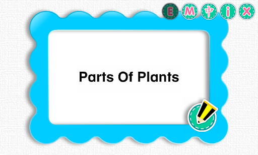 Picture Dictionary - Plants
