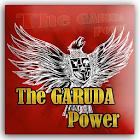 Garuda Solitaire Game icon