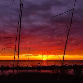 Red Sunset by RomanDA Photography - Landscapes Sunsets & Sunrises ( breeze, 2014, sunset, gulf, long exp, spring )
