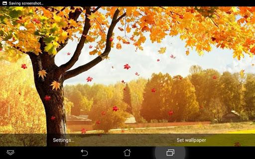 飘落 的树叶 动态壁纸|玩個人化App免費|玩APPs