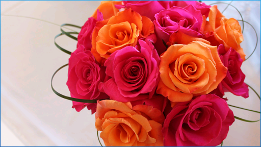 Stunning Flower Wallpapers