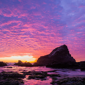 Colorful Sunset by Zach Blackwood - Landscapes Waterscapes ( seal rock, oregon, 2014, sunset, coast )