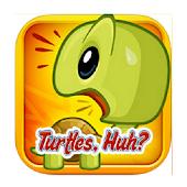 Turtles, Huh?