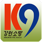 강원119신고