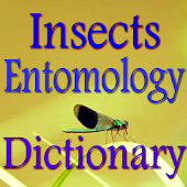 Insects Entomology Dictionary