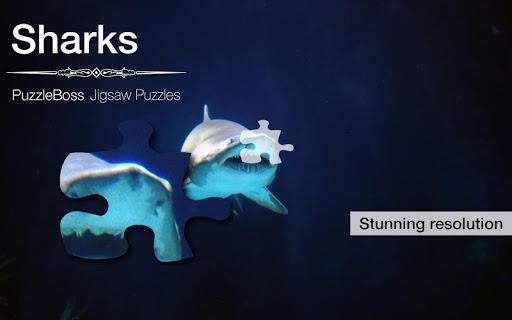 Shark Jigaw Puzzles