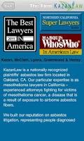 Screenshot of Kazan Law Firm