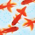 金魚図鑑ベスト100 icon