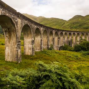 Glenfinnan Viaduct 4 by Don Alexander Lumsden - Buildings & Architecture Bridges & Suspended Structures
