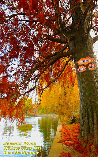 Autumn Pond Willow View HD