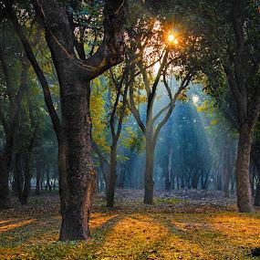 by Nj Javed - Landscapes Sunsets & Sunrises ( , HDR, Landscapes )