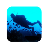 How to Scuba Dive