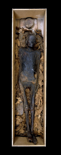 Unwrapped mummy of a woman