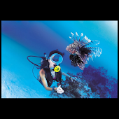 Scuba diving illustrated