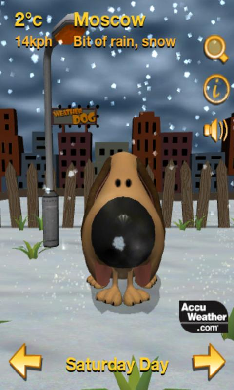 Weather Dog - screenshot
