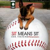 Sit Means Sit Houston