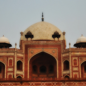Humayun's tomb by Satminder Jaggi - Buildings & Architecture Public & Historical ( islamic architecture, new delhi, india, humayun's tomb, heritage,  )