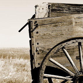 Antique Wooden Wagon in a Field  by Robert Hamm - Black & White Objects & Still Life ( june 2, 2012 2 )