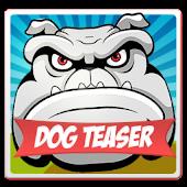 Dog Teaser HD