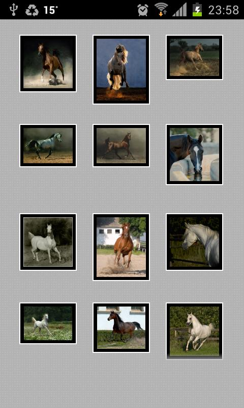 At Resimleri ( Horse Pictures) - screenshot