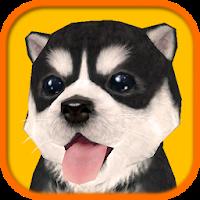 Dog Simulator 1.2