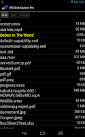 Screenshot of OTG Disk Explorer Pro