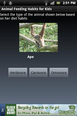 Animal Feeding Habits for Kids - screenshot