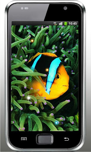 Oceanic Exotic Fishes LWP