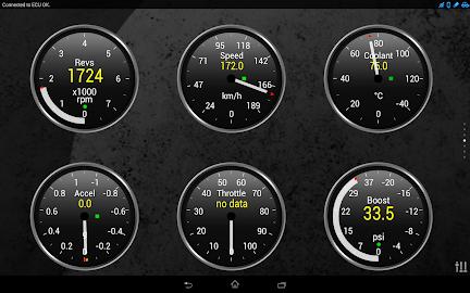 Torque Pro (OBD 2 & Car) Screenshot 2