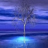 Tree In Violet Sky n Blue Pond