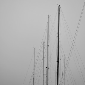 silence by Rux Georgescu - Transportation Boats ( boats, black&white, mist )