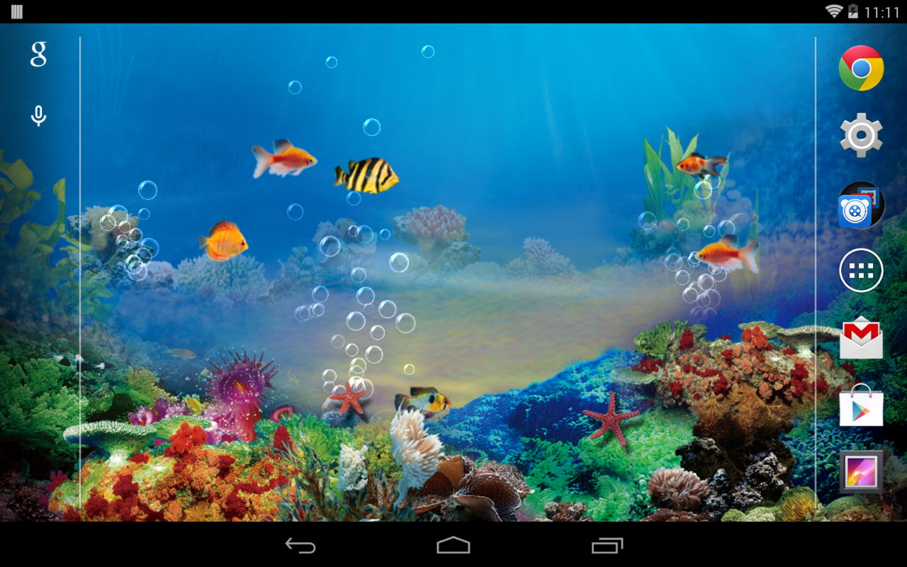 fish live wallpaper for windows