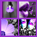 Purple Girly Wallpapers icon