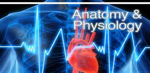 Anatomy And Physiology - Apps on Google Play