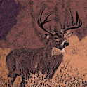 Deer Hunting Rufen Sounds icon