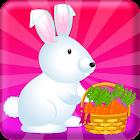 Pet Care Cute Bunny Animal icon